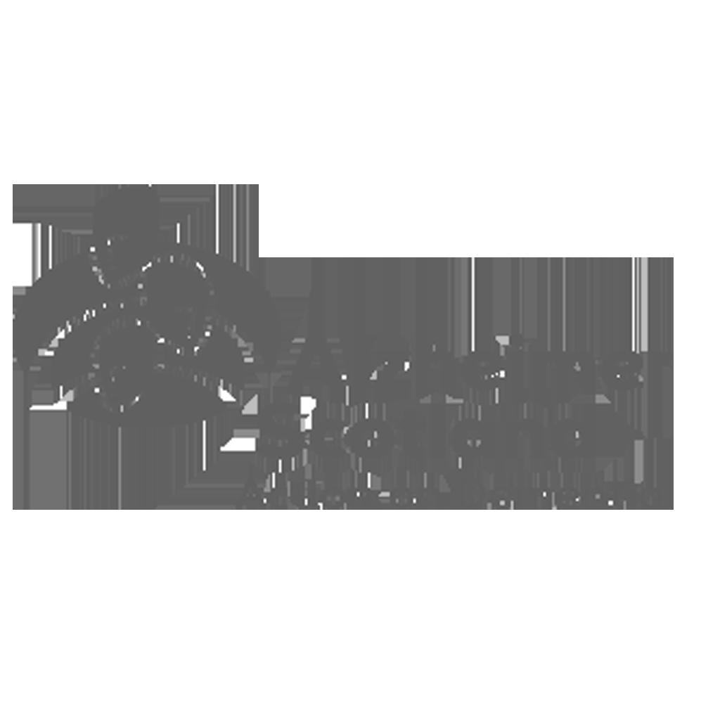 Executive business coaching STEP HR Client Alzheimer's